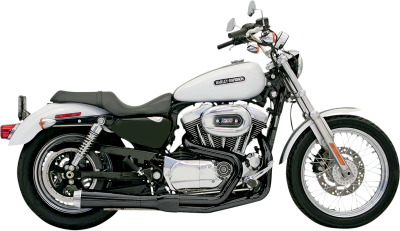 Bassani Xhaust - Bassani Xhaust Road Rage 2 into 1 Systems - EXHAUST RR2-1UP86-03XL BK